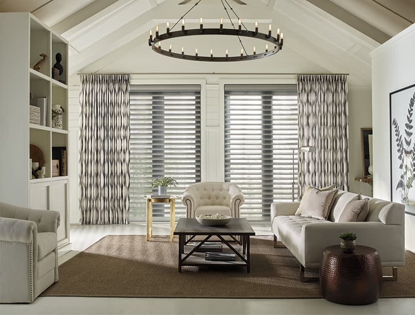 Hunter Douglas Blinds in Stylish Living Room