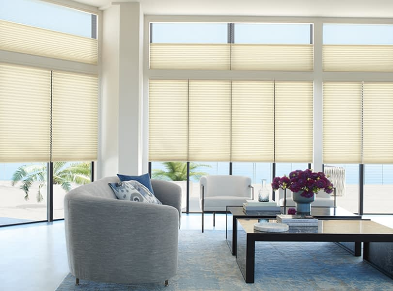 Hunter Douglas Duolite Sheer in Living room Window