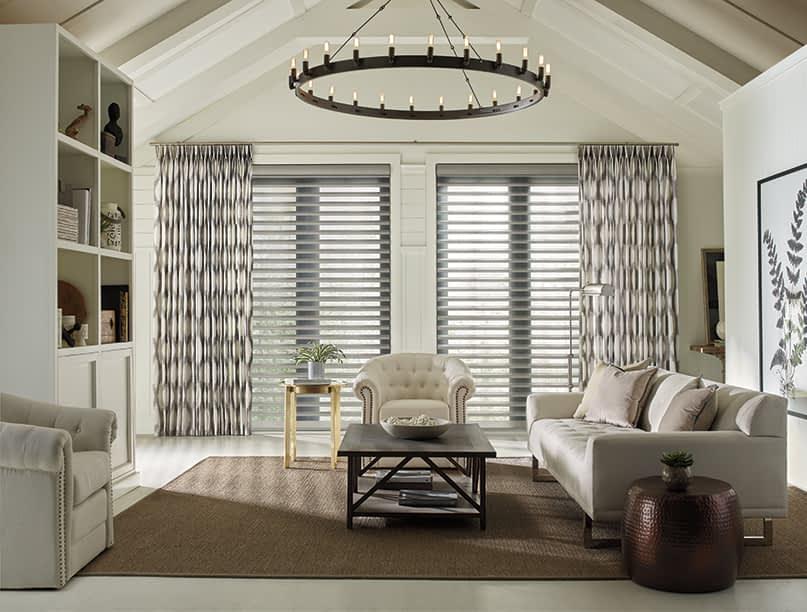 Hunter Douglas Blinds in Stylish Living Room